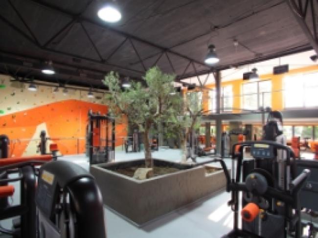 Mofit fitness club